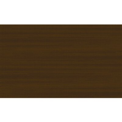 Stain Resistant Espresso Indoor/Outdoor Area Rug Rug Size: Rectangle 3 W x 5 L