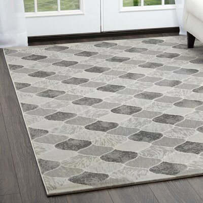 Malkin Gray Area Rug Rug Size: Rectangle 52 x 72