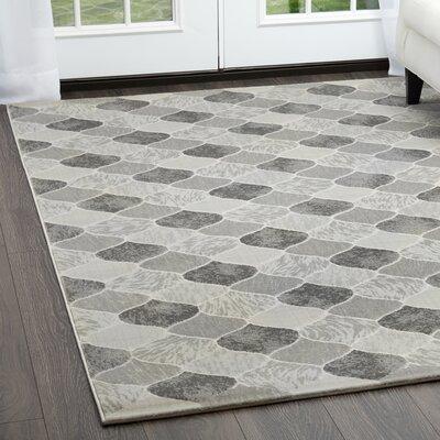Malkin Gray Area Rug Rug Size: Rectangle 710 x 102