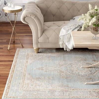 Sofian Blue Oriental Area Rug Rug Size: Rectangle 53 x 73