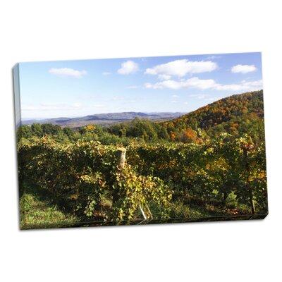 'Mountain Vineyard 2' Photographic Print on Wrapped Canvas FE8D1327E5A540268C5A9F42E9C5968D