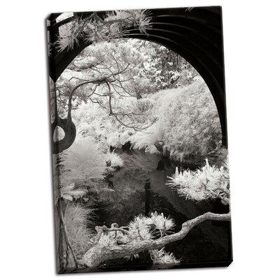 'San Francisco Garden IV' Photographic Print on Wrapped Canvas FA5C66D0ACFD4AD6B6A1B473BC8840CC