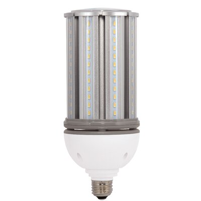 300W Equivalent E26 LED Specialty Light Bulb