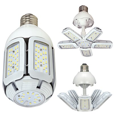 200W Equivalent E26 LED Specialty Light Bulb Bulb Temperature: 5000K