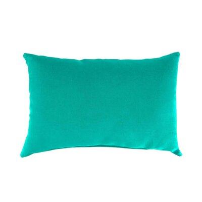 Classic Outdoor Lumbar Pillow Color: Aqua