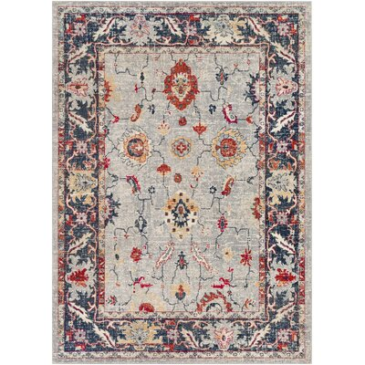 Raminez Distressed Floral Gray/Burnt Orange Area Rug Rug Size: Runner 211 x 710