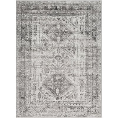 Ranck Distressed Vintage Light Gray/Ivory Area Rug Rug Size: Rectangle 53 x 73