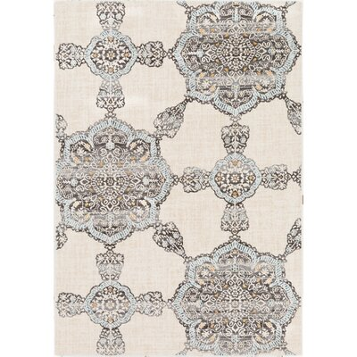 Rameriz Distressed Floral Charcoal/Blue Area Rug Rug Size: Rectangle 53 x 76