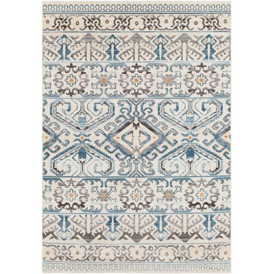Rameriz Distressed Blue/Charcoal Area Rug Rug Size: Rectangle 53 x 76