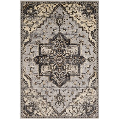 Gerena Vintage Floral Light Gray/Charcoal Area Rug Rug Size: Rectangle 79 x 112