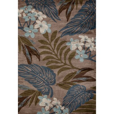 Lynbrook Beige/Blue Area Rug Size: Rectangle 53 x 77