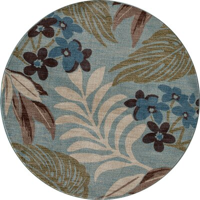 Lynbrook Blue/Brown Area Rug Size: Round 53