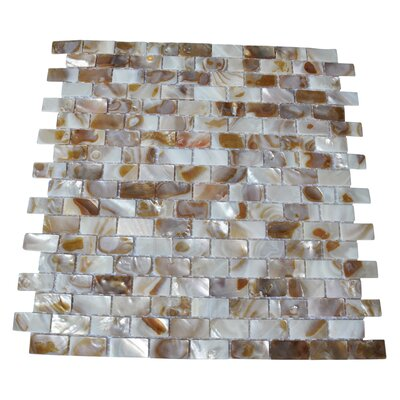 "0.6"" X 1.2"" Seashell Mosaic Tile In White/brown"