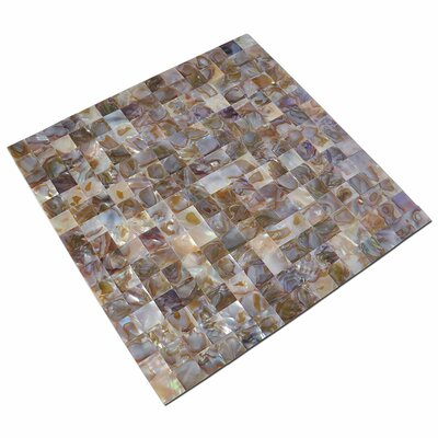 1 x 1 Seashell Mosaic Tile in Brown