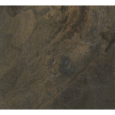 Evolution Glazed 12 x 24 Porcelain Field Tile in Ardesia