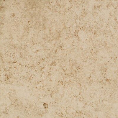 Eternal Glazed Rectified 20 x 20 Porcelain Field Tile in Beige