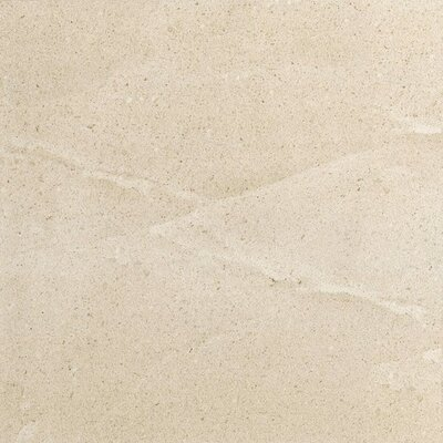 Eternal Glazed Rectified 20 x 20 Porcelain Field Tile in Bianco