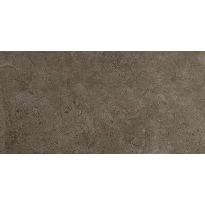 Eternal Glazed Rectified 12 x 24 Porcelain Field Tile in Bianco