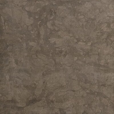 Eternal Glazed Rectified 20 x 20 Porcelain Field Tile in Antracite