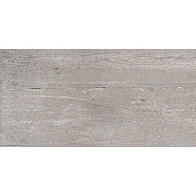 12 x 24 Porcelain Wood Look Tile in Dust