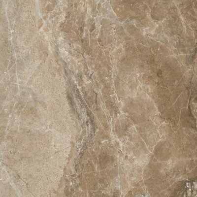 Emperor Napoleon Glazed 18 x 18 Porcelain Field Tile in Brown