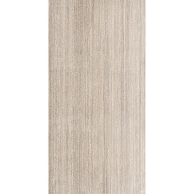 Fusion 12 x 24 Porcelain Field Tile in Beige