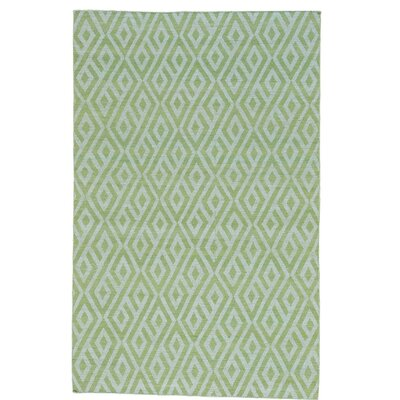 Light Reversible Flat Weave Kilim Hand-Knotted Cotton Green Area Rug Rug Size: Rectangle 52 x 8