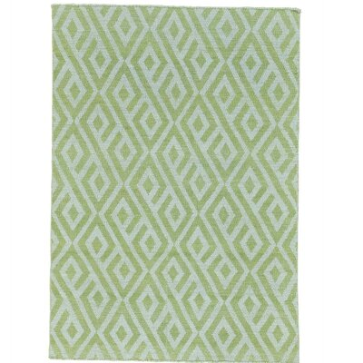 Light Reversible Flat Weave Kilim Hand-Knotted Cotton Green Area Rug Rug Size: Rectangle 39 x 55
