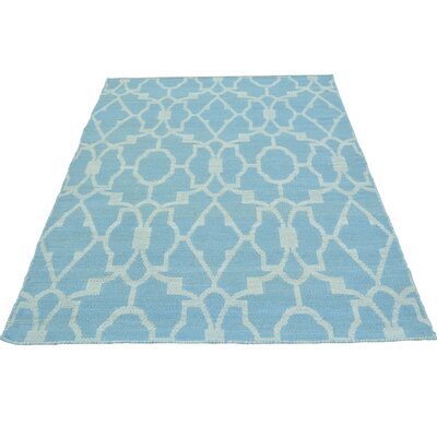 Flat Weave Reversible Kilim Hand-Knotted Cotton Blue Area Rug