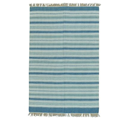 Striped Flat Weave Kilim Oriental Hand-Knotted Light Blue/Gray Area Rug