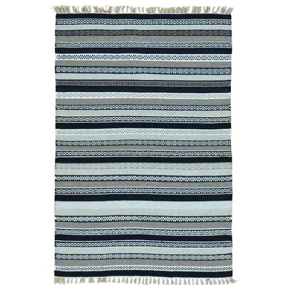 Striped Durie Kilim Flat Weave Oriental Hand-Knotted Blue/White Area Rug