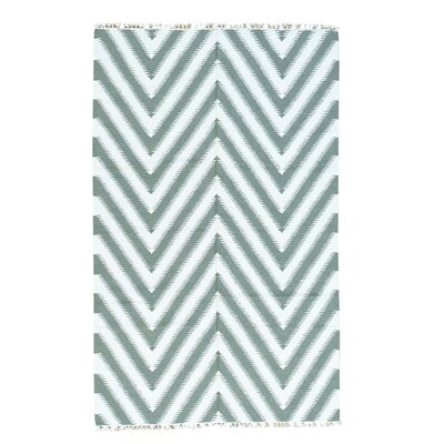 Zigzag Kilim Flat Weave Oriental Hand-Knotted Ivory Area Rug