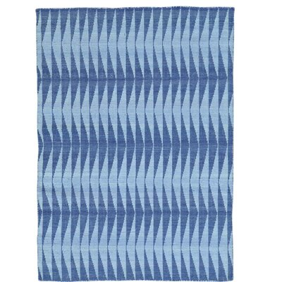 Reversible Kilim Flat Weave Oriental Hand-Knotted Light Blue/Purple Area Rug