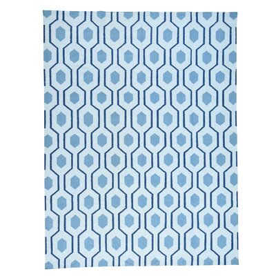 Geometric Reversible Kilim Flat Weave Hand-Knotted Blue Area Rug
