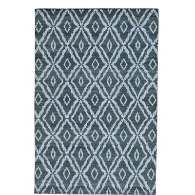 Flat Weave Kilim Reversible Oriental Hand-Knotted Gray Area Rug