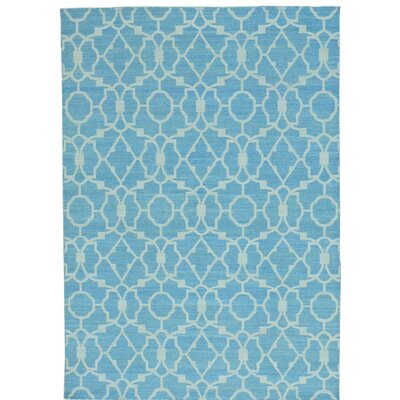 Flat Weave Reversible Kilim Oriental Hand-Knotted Blue Area Rug