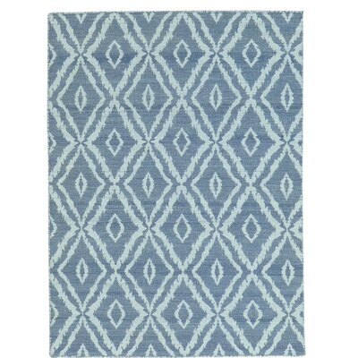 Reversible Kilim Oriental Hand-Knotted Gray Area Rug
