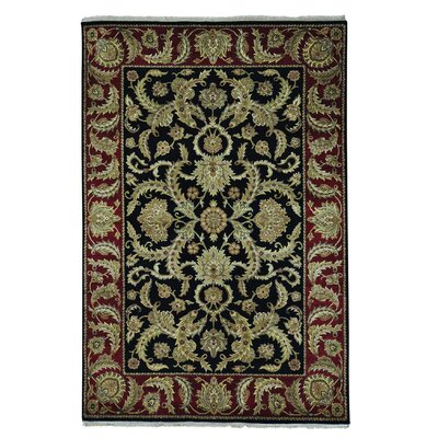 Plush Rajasthan Hand-Knotted Black Area Rug