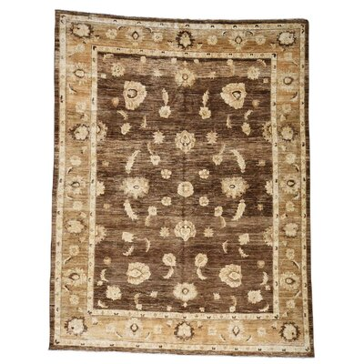 One-of-a-Kind Le Sirenuse Abrash Oriental Hand-Knotted Area Rug