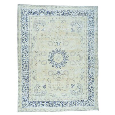 Kerman Worn Hand-Knotted Ivory Area Rug