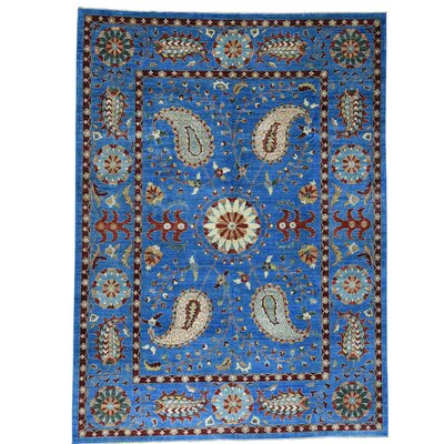One-of-a-Kind Le Sirenuse Suzani Oriental Hand-Knotted Area Rug