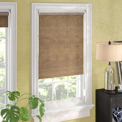 Coleman Continous Roller Shade Size: 31 W x 64 L, Color: Candyfloss Latte (Privacy & Natural Woven)