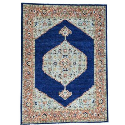 Bidjar Oriental Hand-Knotted Blue Area Rug