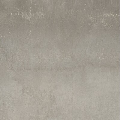 Steelwalk 24 x 24 Porcelain Field Tile in Nikel