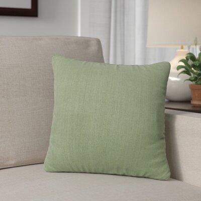 Outdoor Throw Pillow Color: Cilantro