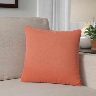 Outdoor Throw Pillow Color: Tangerine