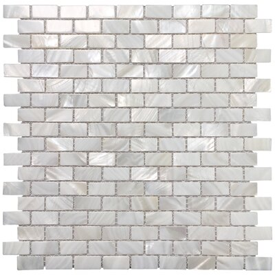0.6 x 1.2 Seashell Mosaic Tile in White Opal