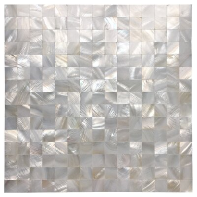 0.8 x 0.8 Seashell Mosaic Tile in White Opal