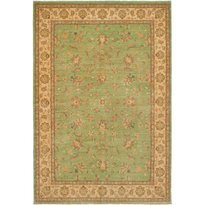 One-of-a-Kind Charlena Hand-Knotted Wool Light Green Area Rug