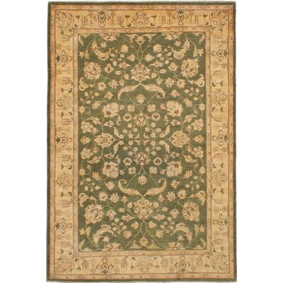One-of-a-Kind Charlena Hand-Knotted Wool Olive Green Area Rug